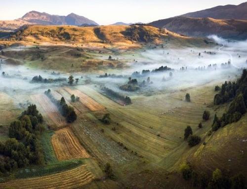 Naujausias vertinimas rodo, kad Europos gamta nyksta