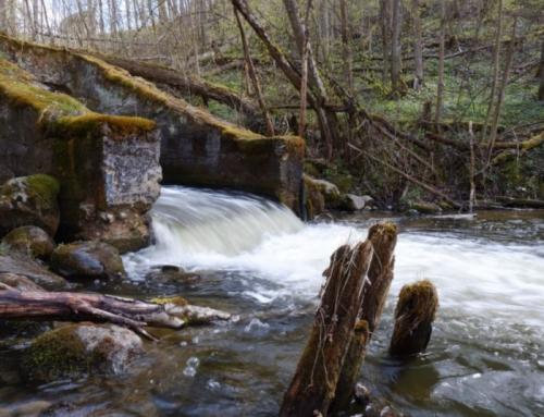 Upių vientisumui atkurti ir užtvankoms demontuoti – veiksmų planas